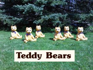 teddyberasphoto